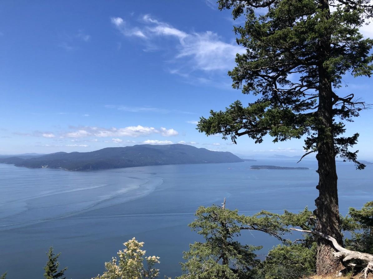 Lummi Island Baker Preserve Overlook View of Surrounding Islands