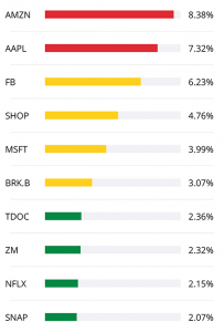 Top 10 Stock Holdings